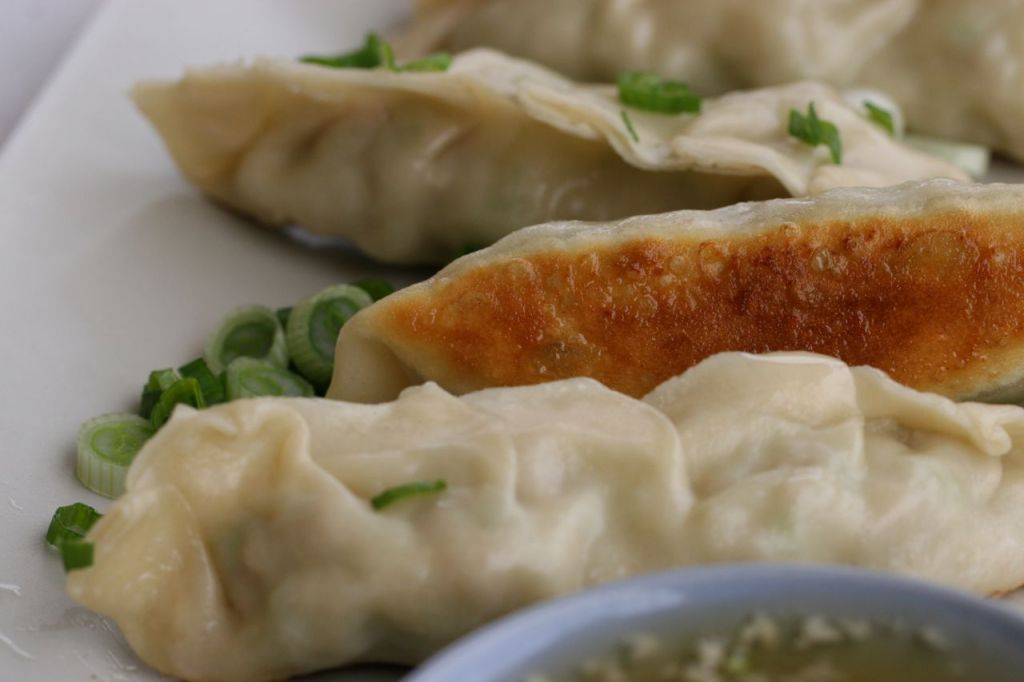 ... japanese pan fried dumplings gyoza recipe japanese pan fried dumplings